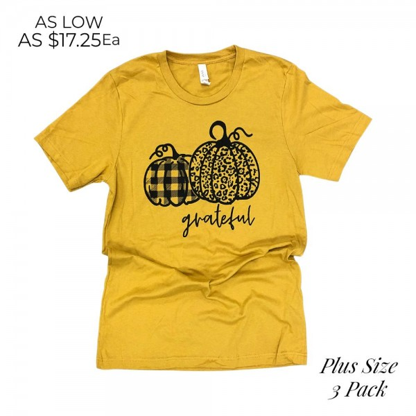 Grateful Pumpkins Plus Size Graphic Tee (3 Pack)  - Printed on a Bella Canvas Tee - Pack Breakdown: 6pcs/pack - Sizes: 3- 2XL - 100% Cotton-