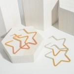 Wholesale two Metal Star Earrings Long