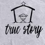 Wholesale true Story Christmas Graphic Tee Printed Gildan Softstyle Brand Color