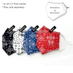 Wholesale do everything Love Brand Adjustable Paisley Bandana Print Fashion Mask