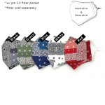 Wholesale do everything Love Brand Adjustable Bandana Patch Print Fashion Mask F